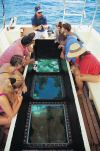 glass-bottomed boat on reef