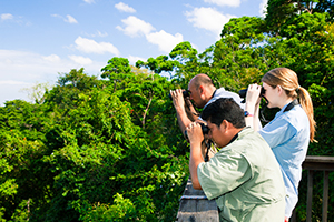 birding from the toucan tower. photo by Roy Toft/the lodge at pico bonito
