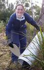 tasmanian devil program volunteer
