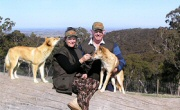 watsons with dingoes